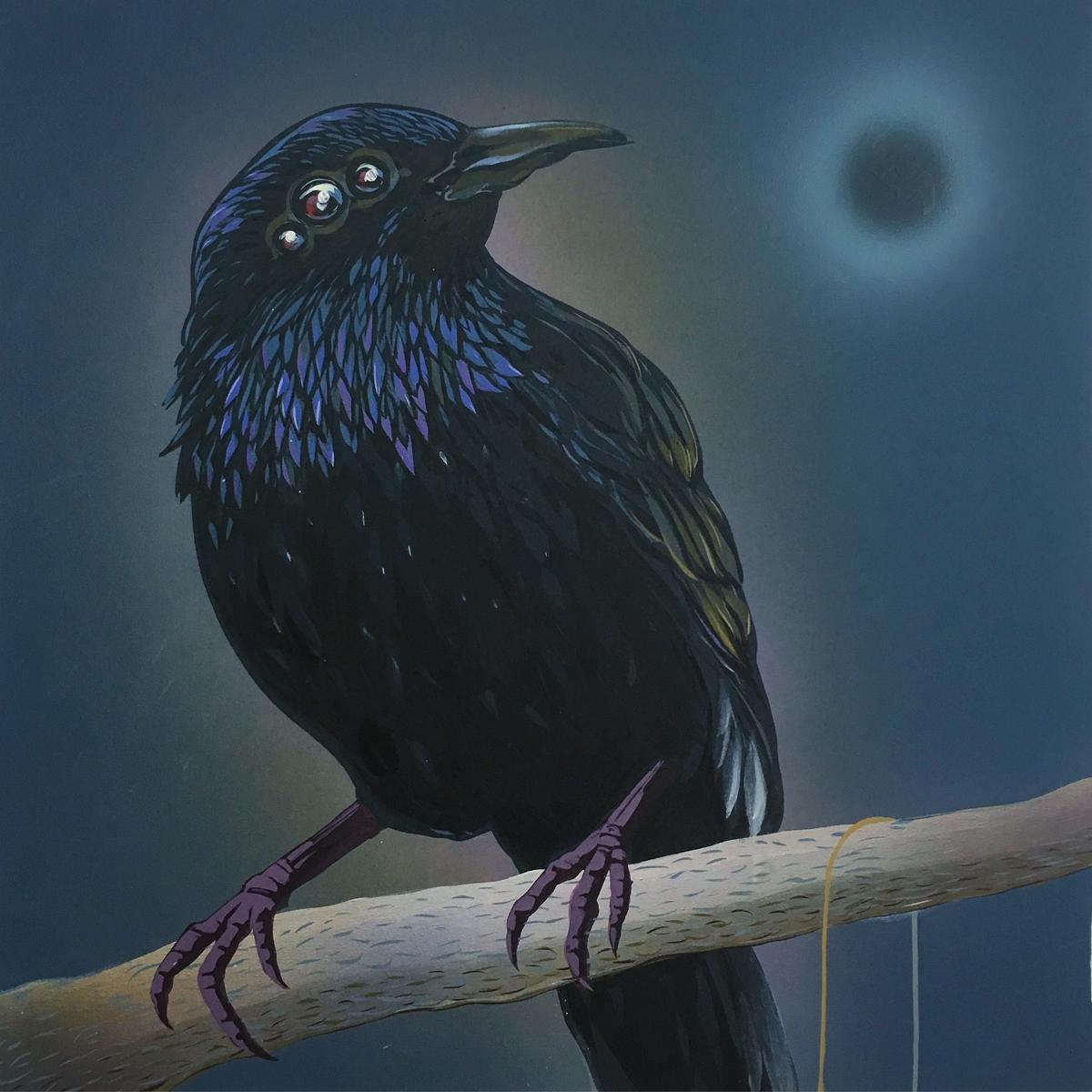 black sun, black starling