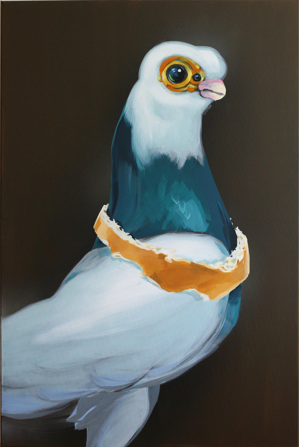 mr.pigeon